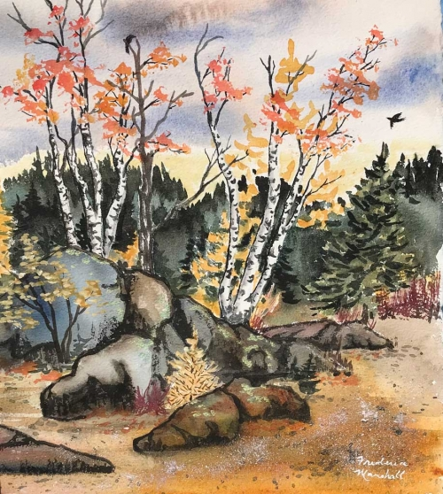 Autumn Birches #3 Watercolor Painting by Frederica Marshall